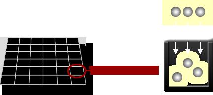 monochrome1