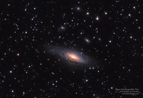 Deer Lick Group - NGC 7331 - Stgo. de Tuna, Perú